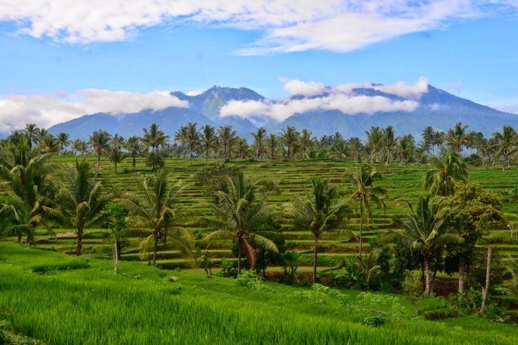 Lombok tak hanya memiliki Desa Sade yang berada di Lombok Tengah saja sebagai desa wisata. Desa wisata Tete Batu bisa menjadi alternatif wisata lain yangmenawarkan pemandangan berbeda yang tak kalah indahnya. Terletak di kaki Gunung Rinjani, desa ini memiliki kontur tanah yang memanjang seperti ngarai dengan persawahan subur dan hijau. [Photo by http://trippingaroundtheglobe.blogspot.co.id]