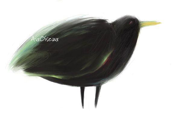 Oiseau noir vert tendre rouge dessin numérique par AuxOiseaux