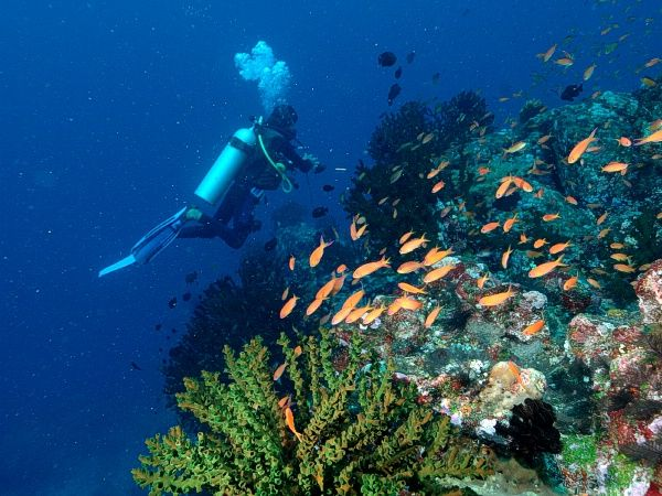 Dive site Pulau Weh, Sabang - Aceh