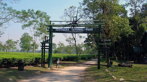 Dooars, 6Days/5Nights - Proposed Route: Lataguri - Gorumara - Chapramari/Khunia - Jhalong - Bindu - Samsing - Suntalikhola