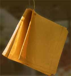 Paper bags on a string - used at most local shops for fruit, veg, sweets, ribbon by the yard...