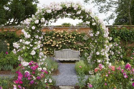 Love this rose arch with rose climbing on the back wall