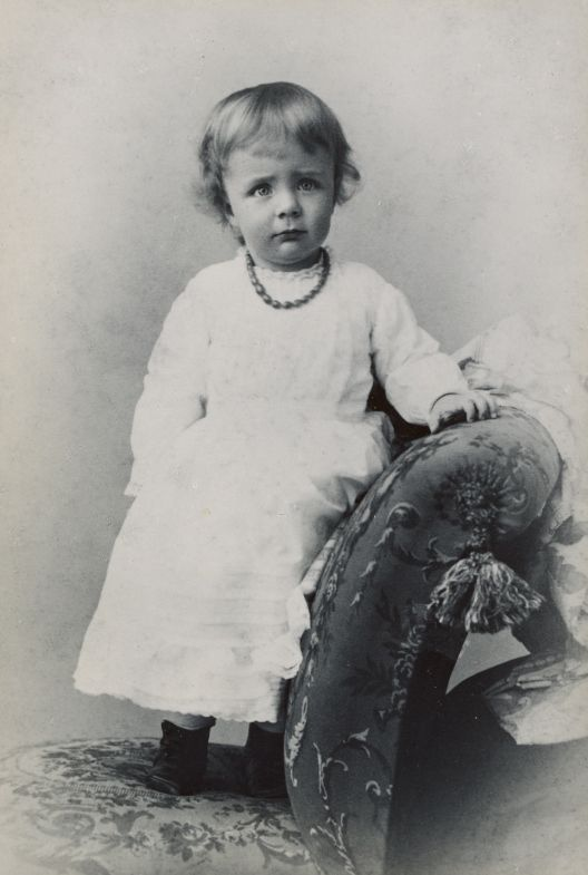 early childhood and the rise to politics of theodore roosevelt This page contains details about the nonfiction book the rise of theodore roosevelt by involvement in politics and accomplishments early childhood.
