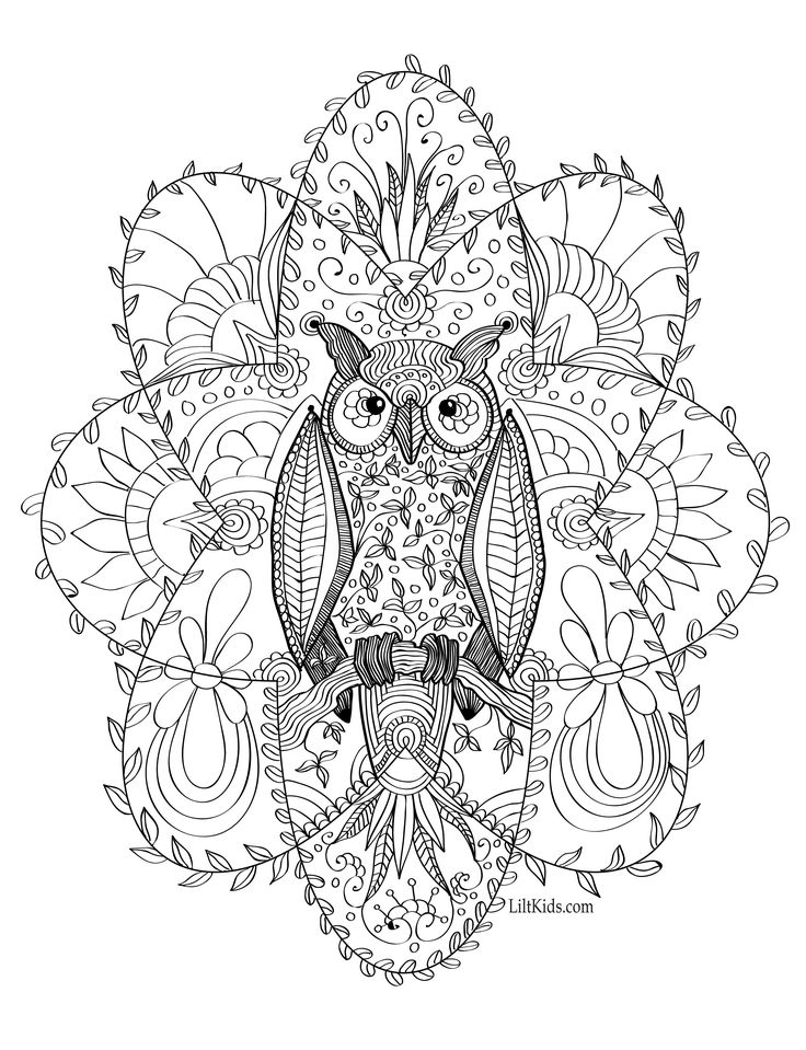 Free gorgeous owl adult coloring book image from LiltKids.com! See more free adult coloring book images at LiltKids.com. Pin now, color later!