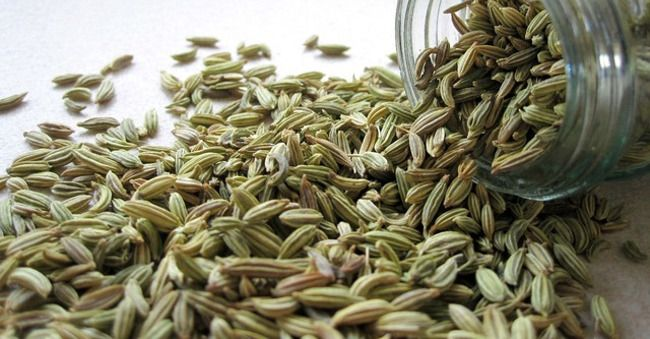 Tisana al finocchio: la ricetta per prepararla in casa