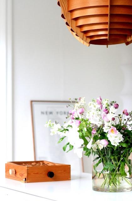 Die besten 25 dunkellicht zimmerpflanzen ideen auf pinterest zimmerpflanzen wenig licht - Zimmerpflanzen groay ...
