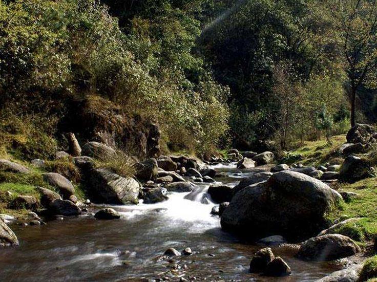 Disfruta la naturaleza cerca del DF en estos destinos únicos; hay cascadas, vegetación y lugares únicos para sentir el poder de la madre tierra