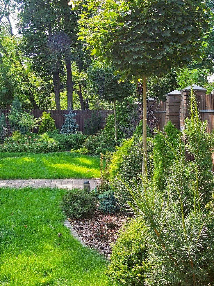 Ogród leśny   Niebanalny ogród