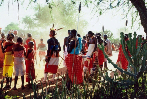 Experience the Maasai culture