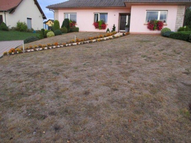 refaire sa pelouse ou son gazon en automne ou au printemps. Black Bedroom Furniture Sets. Home Design Ideas