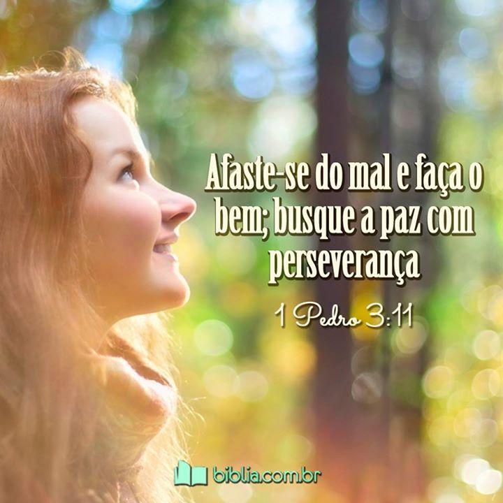 Afaste-se do mal e faça o bem; busque a paz com perseverança. #fé #paz #bondade #Biblia