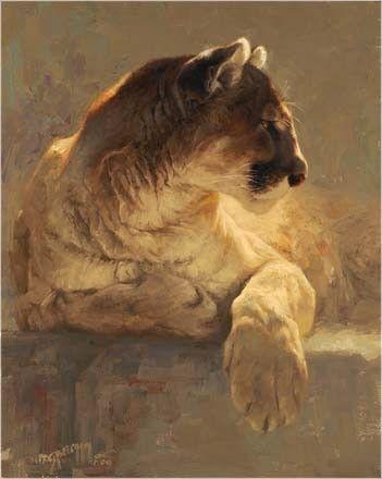 Puma !--Greg Beecham, painter of animals and more.