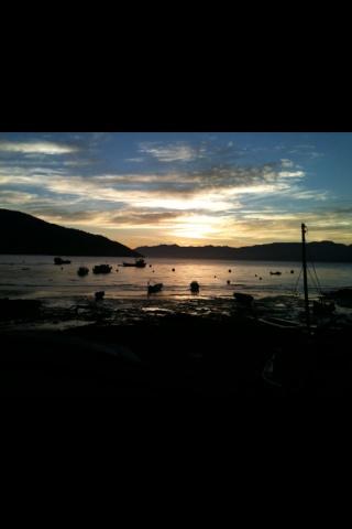Puerto cisne