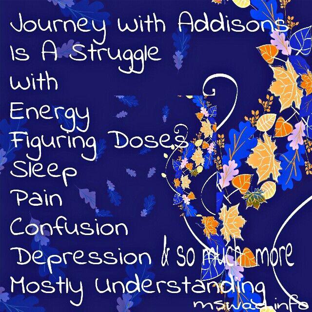 Addison S Disease Dog Medicine