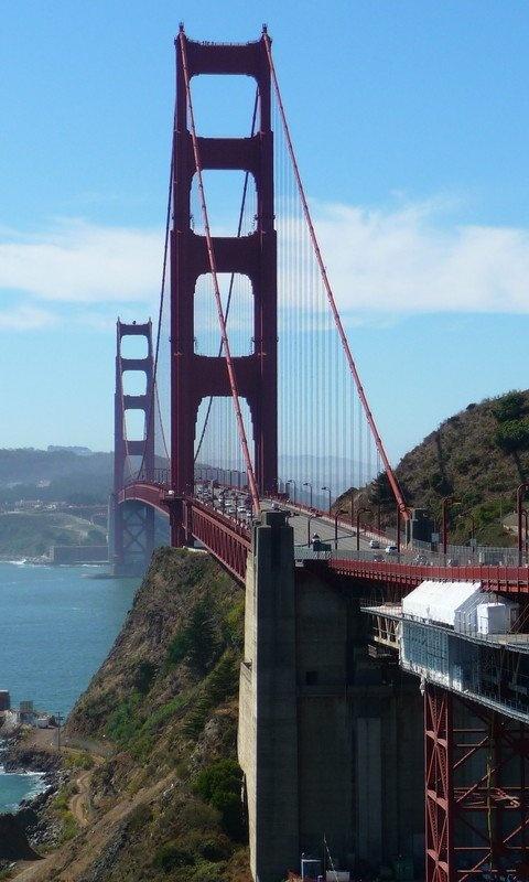 San Francisco: Buckets Lists, Favorite Destinations, Wild Things, San Francisco