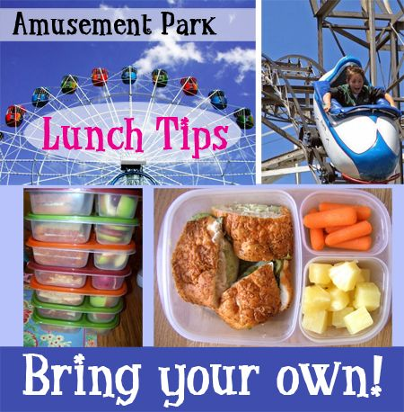 Save money at amusement parks. Pack your own lunches in EasyLunchboxes