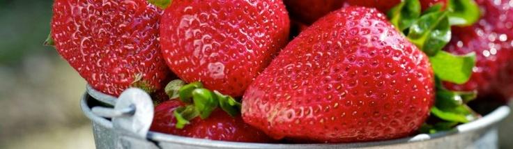 Läskande jordgubbar