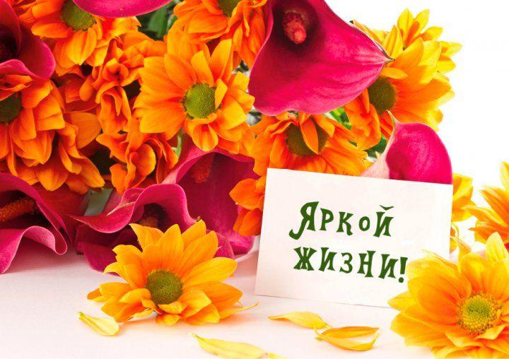 немного открытки цветы с днем рождения открытки с днем рождения для мужчины очень динамичны, хочется