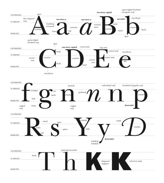 Type Anatomy - Rocky Mountain College of Art and Design Online