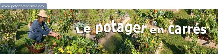 Bienvenue sur le site officiel du jardinage en carrés www.potagerencarres.info par Anne-Marie Nageleisen, auteure de la méthode française du...
