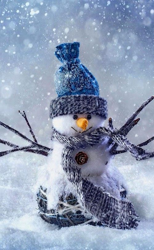 snowman dressed for the cold