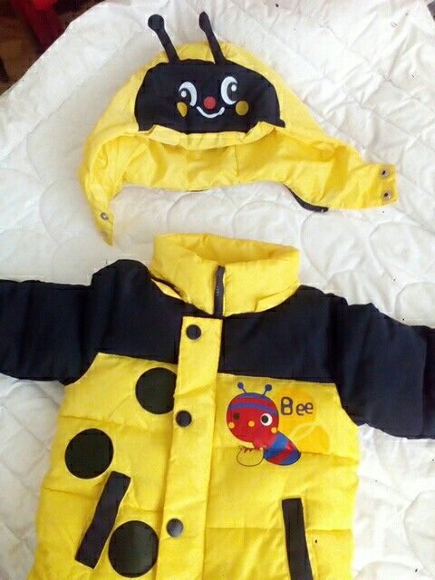 5958278e0 Bees Winter Jacket For Boys