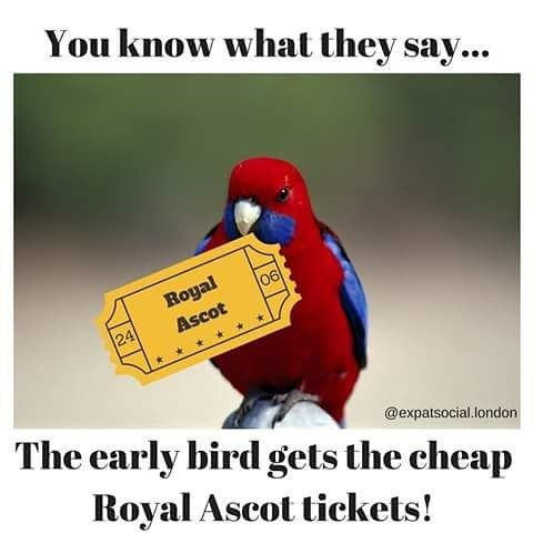 Early bird Royal Ascot tickets on sale NOW. Get them before they run out! See our Facebook event for details #aussiesinlondon #ail #royalascot2017 #races #expatlife #livinginlondon