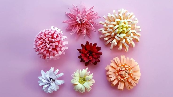 7 modele de crizanteme quilling--7 patterns of quilling chrysanthemums