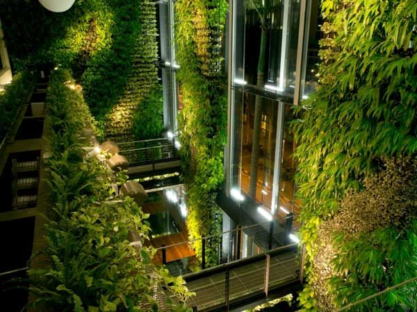 What Makes a Biophilic City? - Landscape Architects Network