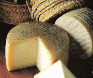 Queso de oveja - PRODUCTOS FAYOS