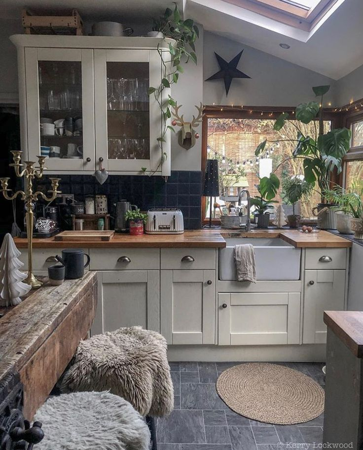 Farmhouse and plants in kitchen