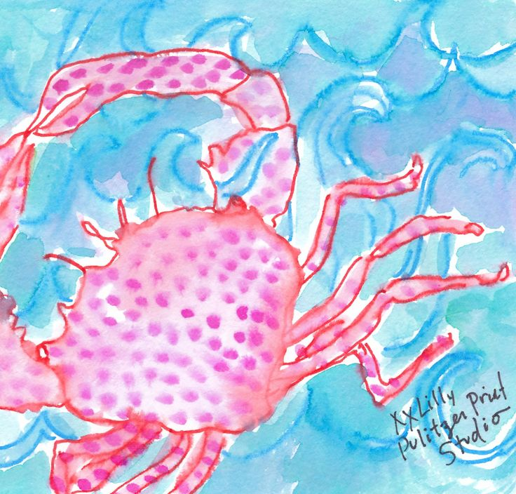 951 Best Images About Lilly 5x5 On Pinterest