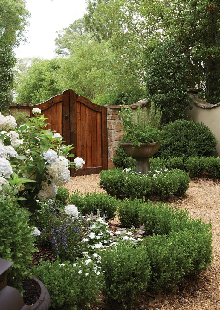 Garden entrance with boxwood hedges, white roses and a decidedly Mediterranean feel.