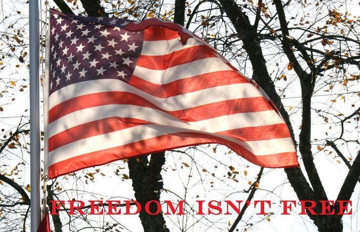 veterans day 2016 flag