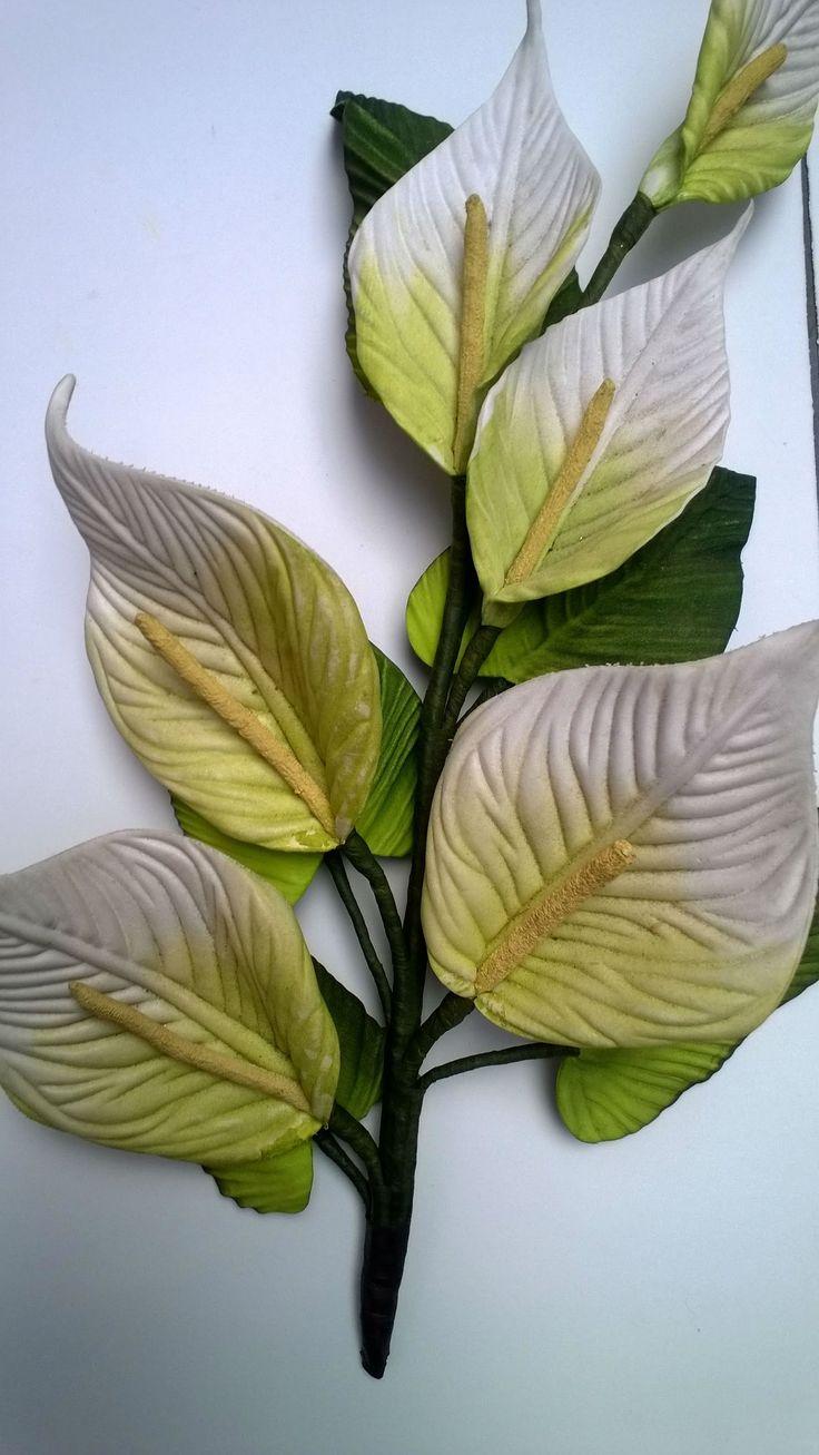Mega Flores - Copo de Leite
