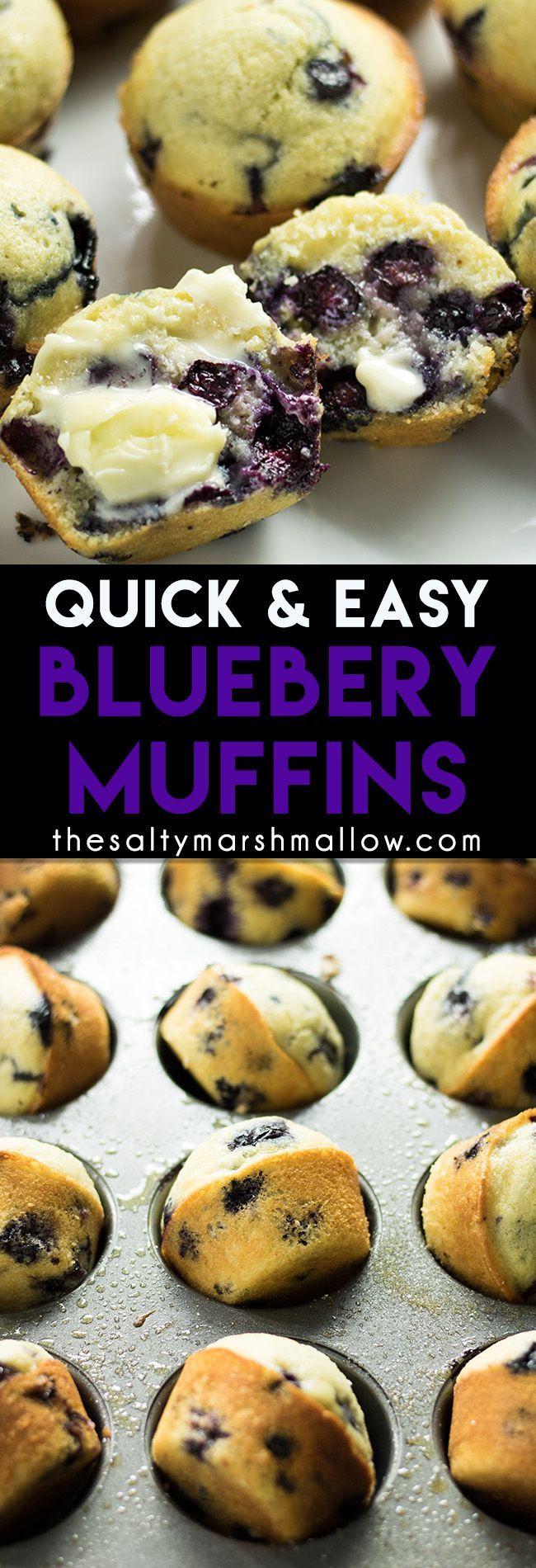 Easy Blueberry Muffins: My favorite quick and easy blueberry muffin recipe!  These muffins take one bowl and are ready in 30 minutes.