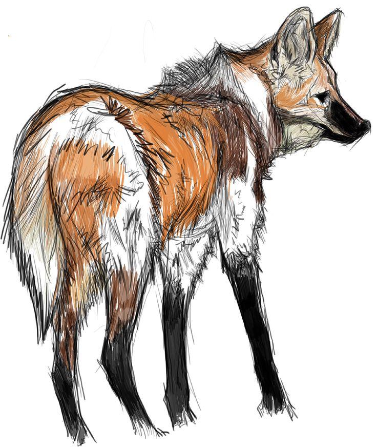 Lobo Guará Illustration - fuly Ilustração desenvolvida pela linguagem do Volume