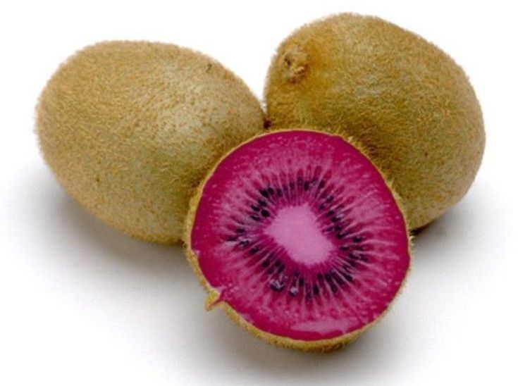 Kiwi Seeds - PINK LADY - Great Houseplant - Rare Tropical Fruit - 50 Seeds #theseedhouse