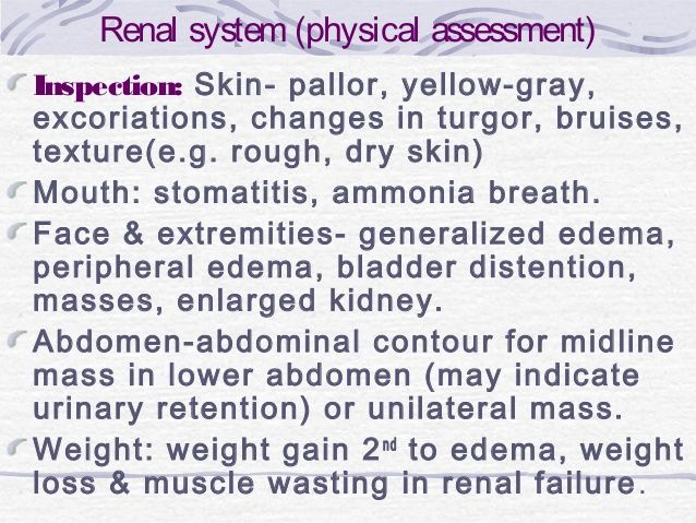 Renal system (physical assessment) Inspection: Skin- pallor…