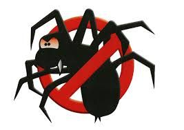 get spiders control in toowoomba by petes pest control toowoomba