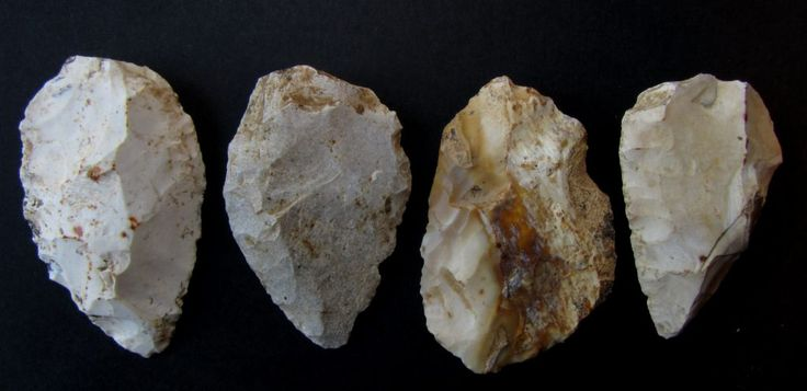 several Mousterian artifacts from a larger surface collection from the  Mont-les-Etrelles, department of Haute Saône near Besancon