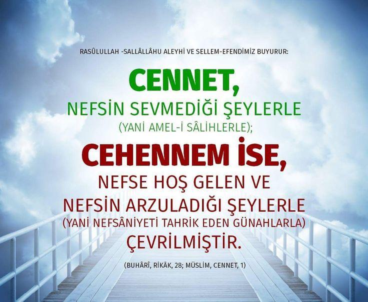 Cennet.  #cennet #nefis #sevgi #amel #cehennem #nefs #arzu #günah #sevap #islam #ilmisuffa