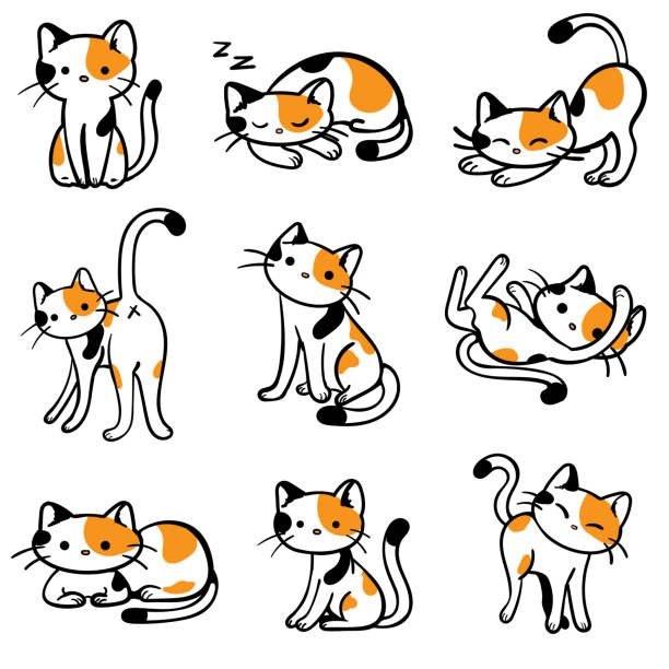 Calico Cat Cartoon Google Search Calico Cat Vector Illustration Illustration