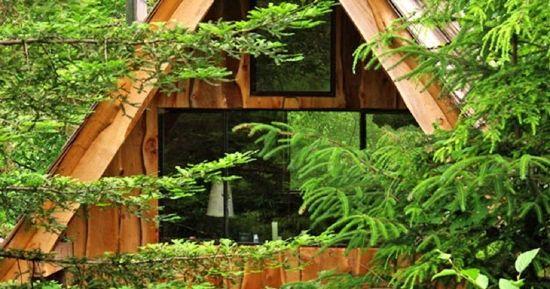 Cabana din lemn de doar 20 de mp din mijlocul padurii care are chiriasi in fiecare week-end