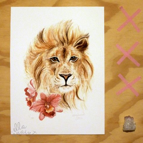 Lion and Orchids - limited edition giclee print by ellaquaint