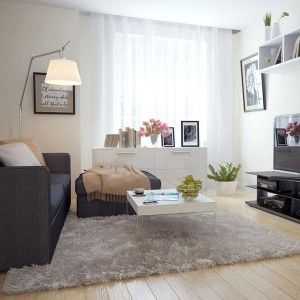 Black and White - Interior Color Trend 2013 For Cozy Living Room