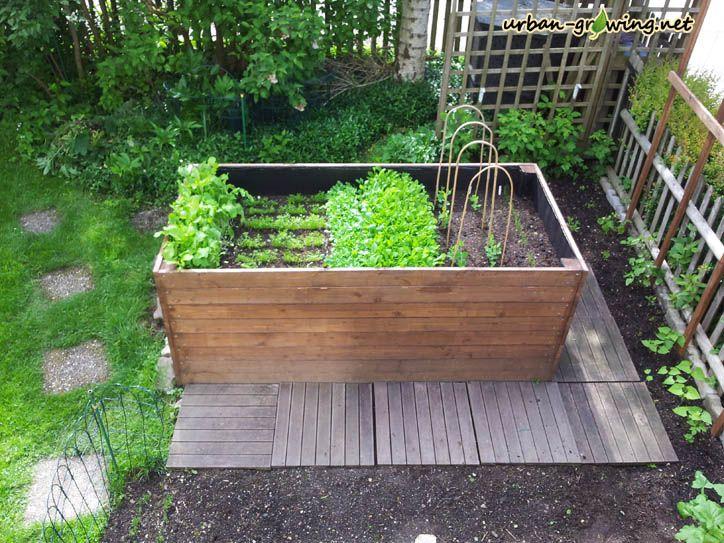 Hochbeet anpflanzen - www.urban-growing.net