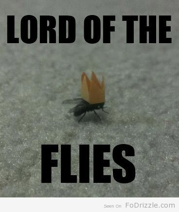 best lord of the flies images lord jack o  funny lord of the flies essay lord of the flies