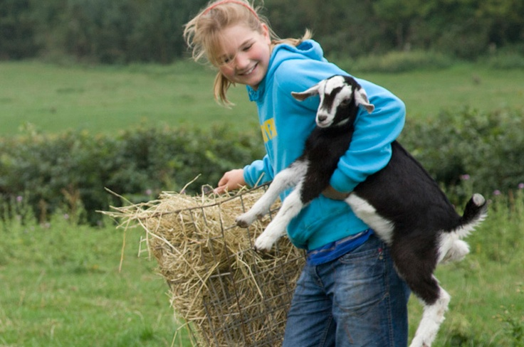 Kids are encouraged to help out with lambing, feeding and - of course - entertaining