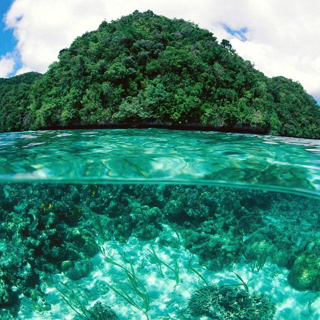 Rock Islands, Palau: Limestone Island, Spaces, Palau Island, Favorite Places, Nature, Beautiful, Places I D, Travel